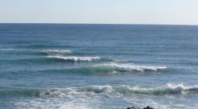 FPTS: Sudul litoralului va scădea preţurile în sezonul următor
