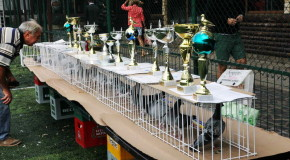 Asociatia Columbofila a judetului Calarasi, campioana nationala pentru a cincea oară consecutiv